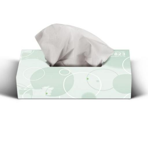 Soclean Facial Tissues 2ply 36 x 100 Pack