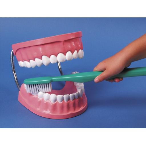 Dental Set With Brush