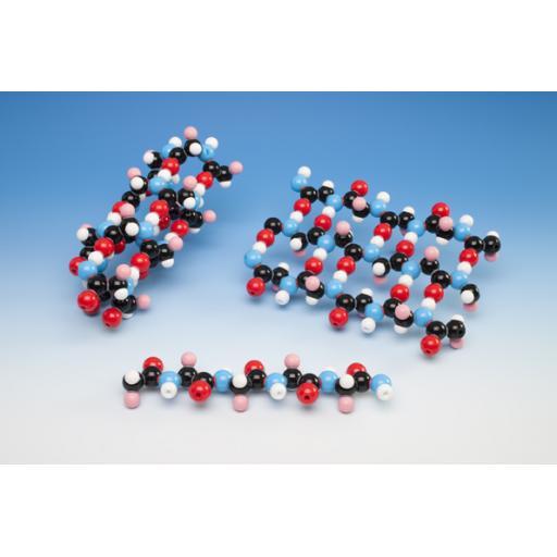 20 Amino Acid Collection Set