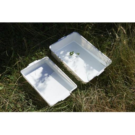 Small Pond Tray - White